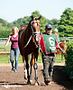 Fear the Kitten before The Kent Stakes (gr 2) at Delaware Park on 9/7/13