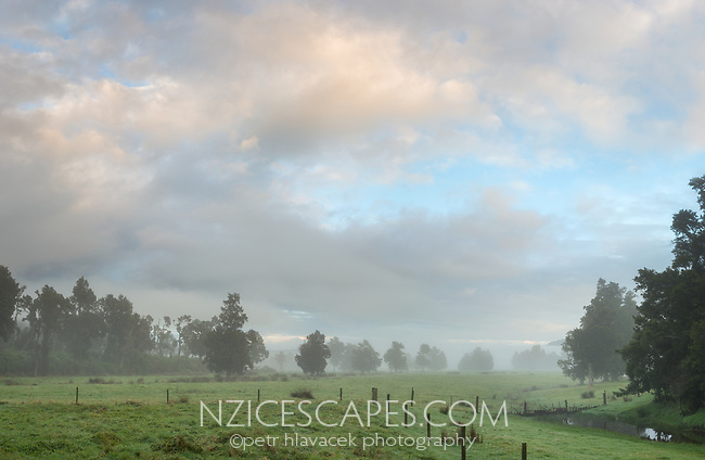 Misty dawn over farm near Whataroa, South Westland, New Zealand, NZ