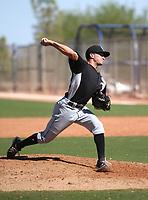 Vince Arrobio - 2017 AIL White Sox (Bill Mitchell)