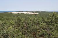 Slowinski-Nationalpark, Blick über Kiefernwald auf die Düne, Binnendüne Biala Gora (Weißer Berg), Polen