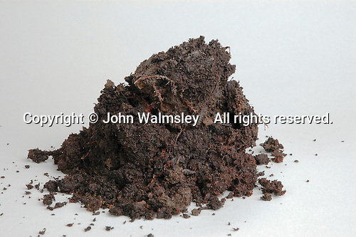 Compost soil sample