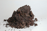 Compost soil sample