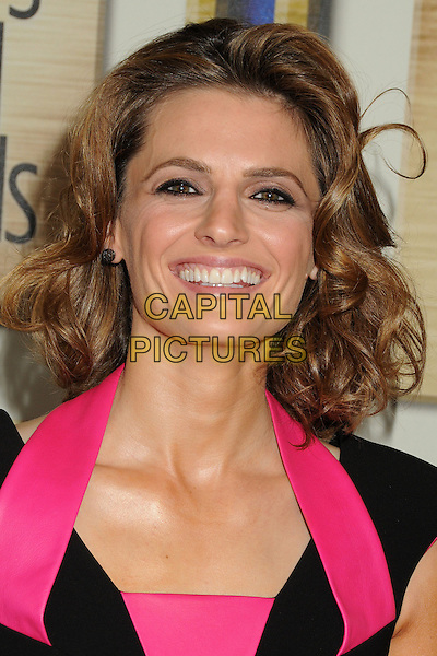 1 February 2014 - Los Angeles, California - Stana Katic. 2014 Writers Guild Awards West Coast held at the JW Marriott Hotel.  <br /> CAP/ADM/BP<br /> &copy;Byron Purvis/AdMedia/Capital Pictures