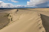 Landscape of the Great Kobuk Sand Dunes, Kobuk Valley National Park, Alaska.