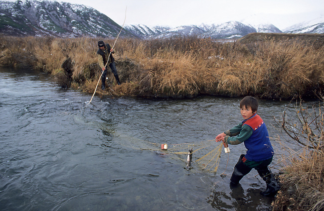 Chukchi boys checking a fish net on a small river near Khailino. Koryakia, Kamchatka, Siberia, Russia