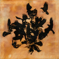 Murder of crows photo transfer over mixed media encaustic painting.