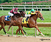 Torpedo Cat winning at Delaware Park on 9/9/13