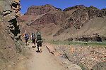 Backpackers hiking up the Bright Angel Trail along the Colorado River, Grand Canyon National Park, northern Arizona, USA .  John leads hiking and photo tours throughout Colorado.