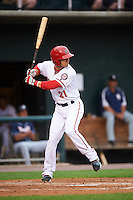 Harrisburg Senators designated hitter Neftali Soto (21) at bat during a game against the New Hampshire Fisher Cats on June 2, 2016 at FNB Field in Harrisburg, Pennsylvania.  New Hampshire defeated Harrisburg 2-1.  (Mike Janes/Four Seam Images)