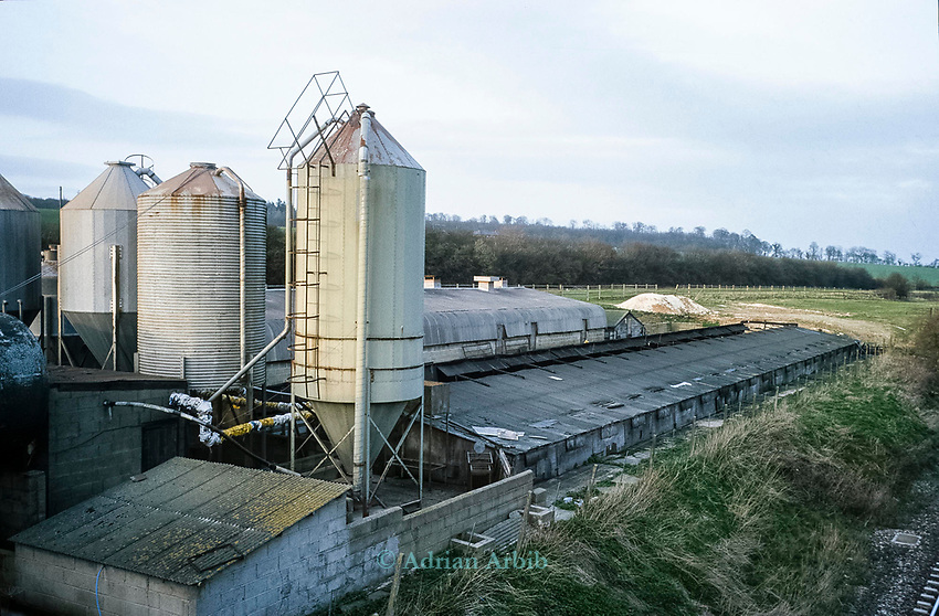 "One of the pig farms being investigated near the River Kennet.   In one of Britain's worst ever incidents of river poisoning which killed more than three million fish.<br /> Scientists from the Agency say carryed out door-to-door enquiries at farms and businesses around the village of Little Bedwyn, Wiltshire, <br /> It is thought contaminants entered the river near the village and spread downriver to the Berkshire Trout Farm, near Hungerford, wiping out its entire stock of more than 150 tonnes of trout .<br /> The Environment Agency's area manager Stu Darby said: ""This is one of the largest incidents of its type in the region to date"