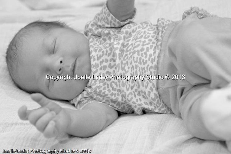 Joelle Leder Photography Studio © 2013