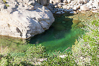 Bach, kristallklarer Bach, Gumpen, Gebirgsbach auf Korsika, Frankreich, mediterran. Brook, rivulet, crystal clear stream, mountain stream, Corsica, France, Mediterranean.