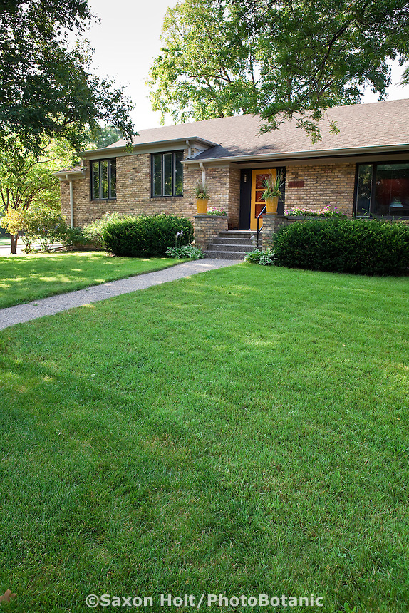 Walkway across grass lawn to front door entry of brick house