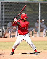 Alberto Rosario / Los Angeles Angels 2008 Instructional League..Photo by:  Bill Mitchell/Four Seam Images