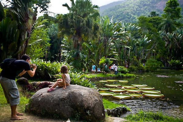 Rio de Janeiro_RJ, Brasil...Jardim Botanico do Rio de Janeiro...The  Botanical garden in Rio de Janeiro...Foto: JOAO MARCOS ROSA / NITRO