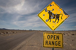 Shot-up Open Range cattle traffic hazard sign, Nye Co., Nev.
