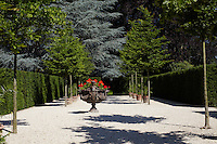 An avenue of young trees lines a gravel walkway in the centre of the garden