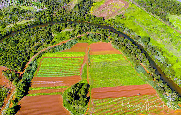 Agriculture au col de Mouirange