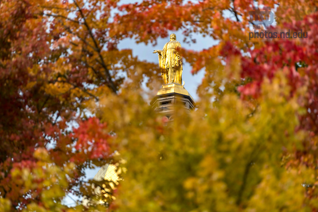October 25, 2018; Golden Dome framed in fall colors. (Photo by Barbara Johnston/University of Notre Dame)