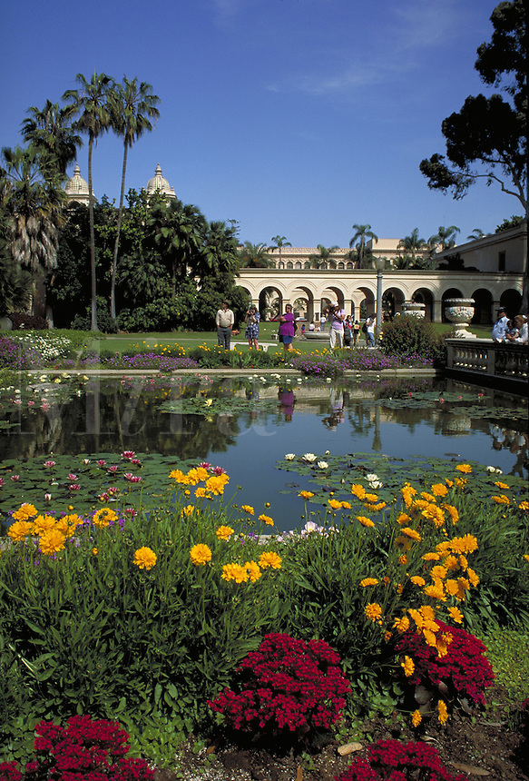 Scenic shot of Balboa Park with tourists, garden and pond in foreground. Destination, park, landscape, urban park, tourists, botanical garden. tourists. San Diego CA USA Balboa Park.