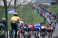 peloton during the 1st passage over the 'Haaghoek' cobbles. <br /> <br /> 74th Omloop Het Nieuwsblad 2019 (BEL)<br /> Gent – Ninove: 200km<br /> ©kramon