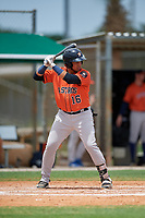 GCL Astros Abraham Castillo (16) at bat during a Gulf Coast League game against the GCL Marlins on August 8, 2019 at the Roger Dean Chevrolet Stadium Complex in Jupiter, Florida.  GCL Marlins defeated GCL Astros 5-4.  (Mike Janes/Four Seam Images)