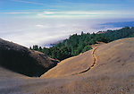 RT-S2  Bolinas Ridge 4x6 postcard