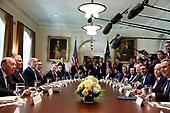 United States President Donald J. Trump hosts Prime Minister Alexis Tsipras of Greece for a working lunch in the Cabinet Room of the White House in Washington, DC on Tuesday, October 17, 2017.<br /> Credit: Martin H. Simon / Pool via CNP