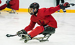 PyeongChang 8/3/2018 - Dominic Cozzolino, of Mississauga, ON, as Canada's sledge hockey team practices ahead of the start of competition at the Gangneung practice venue during the 2018 Winter Paralympic Games in Pyeongchang, Korea. Photo: Dave Holland/Canadian Paralympic Committee