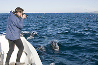 Dr. Vic Peddemors photographing bow riding common dolphins, Delphinus capensis, during the sardine run, Wildcoast, Transkei, South Africa, Indian Ocean, model released