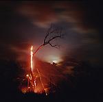 Burning tree with Ryder sky, Chase County, Kansas, 2001