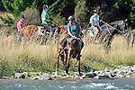 2015 MPC Horse Trek, 12th March 2015, Lake Station, St Arnaud, Nelson Lakes, New Zealand, Photos: Barry Whitnall/shuttersport