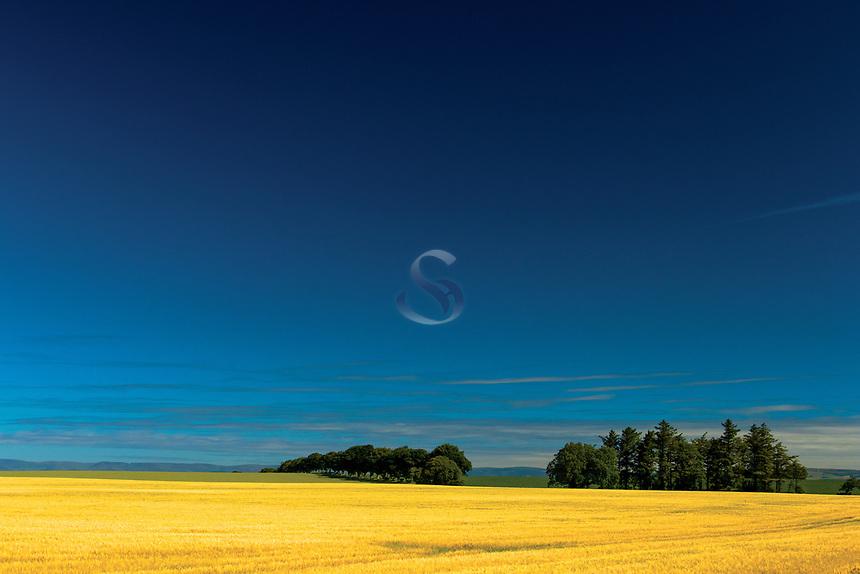 Countryside near Montrose, Angus