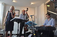 Fleur Stevenson, Nick Hill (b), Maff Potts (kb). Bunkfest 2014. Wallingford. 30.08.2014