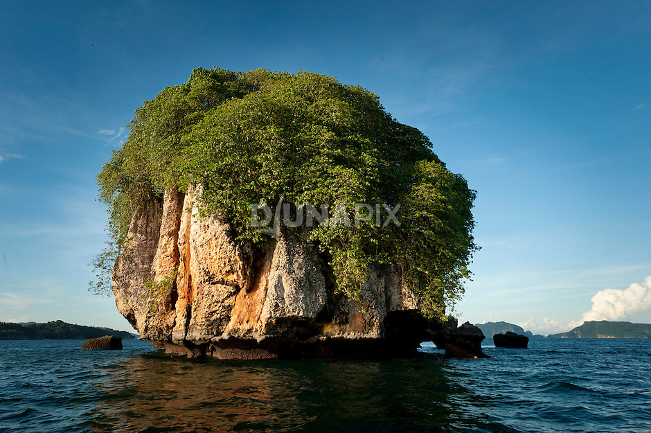 Limestone cliffs of a bird nesting island, Triton Bay, Papua
