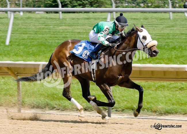 Tiz Showbiz winning at Delaware Park racetrack on 6/16/14