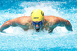 2013 M DI Swimming