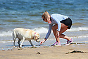 Catching the Sun's rays are Hannah Evans with Sally (the dog) at Helens Bay, County Down, Northern Ireland, Monday, June 10, 2019.  (Photo by Paul McErlane for Belfast Telegraph)