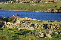 Arabrot, Fjoloy, Rogaland, Norway, 2011