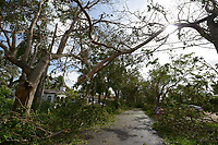 2017 FPL Hurricane Irma damage in Miami, Fla. on Sept. 11, 2017