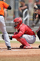 St. Louis Cardinals Jose Godoy (36) during a Minor League Spring Training game against the Miami Marlins on March 26, 2018 at the Roger Dean Stadium Complex in Jupiter, Florida.  (Mike Janes/Four Seam Images)