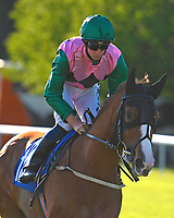 Foxy Femme ridden by Joey haynes goes down to the start  of The Saunton Sands Hotel North Devon Maiden Stakes during Evening Racing at Salisbury Racecourse on 25th May 2019