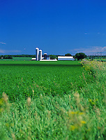 Rural agricultural scenic of a farm and meadow in spring.
