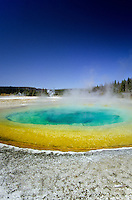 Morning Glory pool in Yellowstone national Park, Wyoming, USA