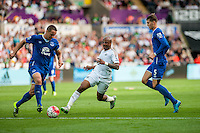 Andre Ayew of Swansea ( centre )  in action during the Barclays Premier League match between Swansea City and Everton played at the Liberty Stadium, Swansea  on September 19th 2015
