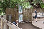 07.01.2019, Lion & Safari Park, Broederstroom, Kalkheuvel, RSA, TL Werder Bremen Johannesburg Tag 05<br /> <br /> im Bild / picture shows <br /> Felix Beijmo (Werder Bremen #02) langweilt sich, Ludwig Augustinsson (Werder Bremen #05) versucht Giraffe hinter Zaun zu animieren, <br /> <br /> Teil der Spieler besucht am 5. Tag des Trainingslager eine geführte Tour im Lion & Safari Park, <br /> <br /> Foto © nordphoto / Ewert