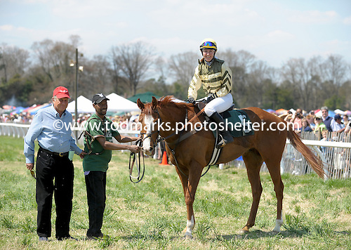 Italian Wedding wins James Maloney hurdle race at Ford Conger Field, Aiken, S.C. 3/20/2010 for owner-trainer Johnathan Sheppard and jockey Danielle Hodsdon.