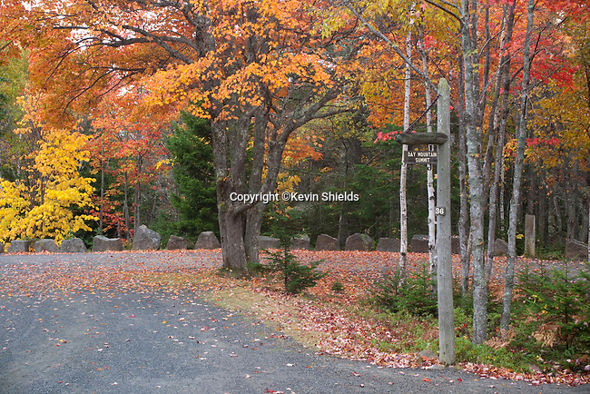 Carriage road to Day Mountain, Acadia National Park, Maine, USA