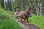 B.C., Cariboo Images