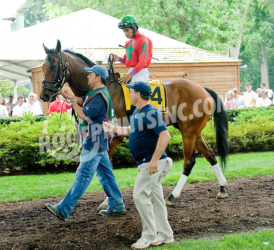 Abilio before The Sussex Stakes at Delaware Park on 7/21/12
